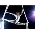 Cirque du Soleil: «Ansmann никогда не подведет».
